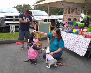 Rescue-Group-at-Pet-Life-Celebration